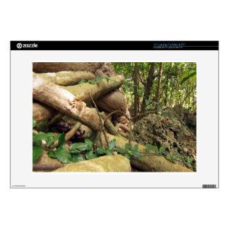 Giant root trees from Zanzibar island Skin For Laptop
