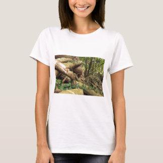 Giant root trees from Zanzibar island T-Shirt