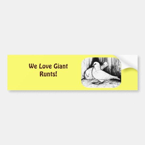 Giant Runt Pigeons Bumper Sticker