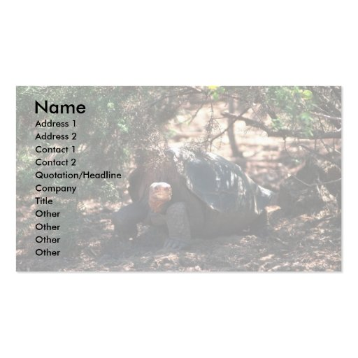 Giant Saddle-Backed Tortoise Standing Double-Sided Standard Business Cards (Pack Of 100)