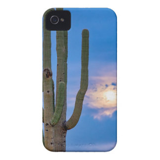 Giant Saguaro Cactus Golden Cloudy Full Moonset iPhone 4 Case-Mate Case