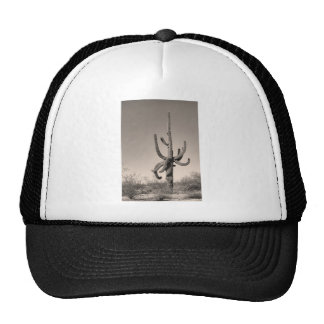 Giant Saguaro Cactus Sepia Trucker Hat