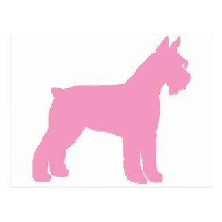 Giant Schnauzer (pink) Postcard