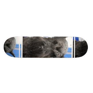 Giant Schnauzer Skateboard