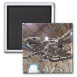 Giant Sea Turtle Archelon Magnet