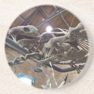 Giant Sea Turtle Archelon Sandstone Coaster