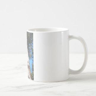 Giant Seqouia Coffee Mug