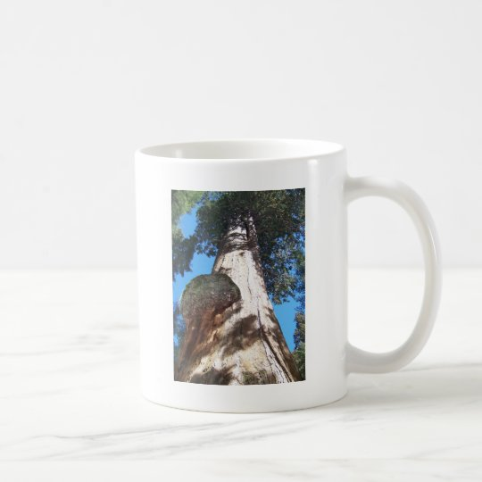 Giant Seqouia Coffee Mug