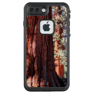 Giant Sequoia Phone Case