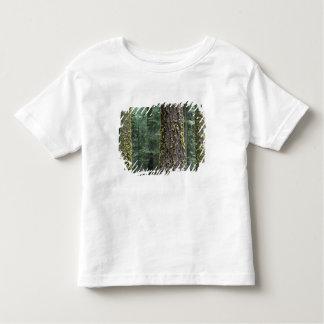 Giant Sequoia trees in the forest, Sequoia and Toddler T-shirt
