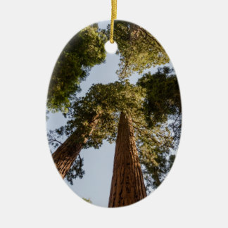 Giant Sequoias in Sequoia National Park Ceramic Ornament