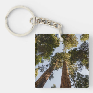 Giant Sequoias in Sequoia National Park Keychain