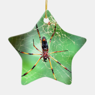 Giant Spider Double-Sided Star Ceramic Christmas Ornament