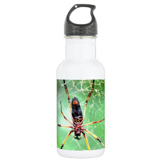 Giant Spider Stainless Steel Water Bottle