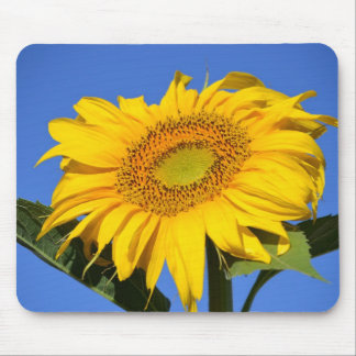 Giant Sunflower Mouse Pad