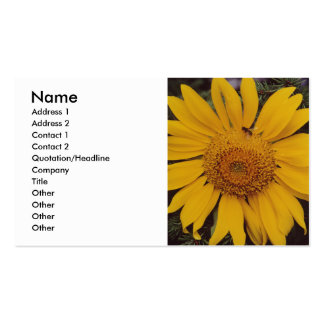 Giant Sunflower with Bee, Green Pine Tree Branches Business Card Templates