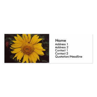 Giant Sunflower with Bee, Green Pine Tree Branches Business Card