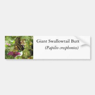 Giant Swallowtail Butterfly Car Bumper Sticker