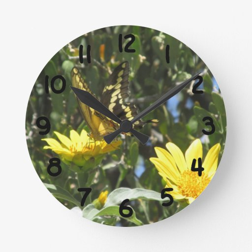 Giant Swallowtail Butterfly Round Clock