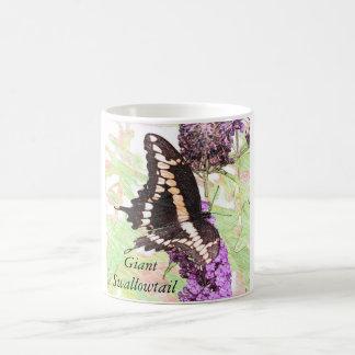 Giant Swallowtail Butterfly Drawing Mug