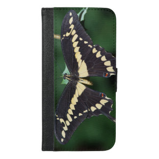 Giant Swallowtail Butterfly iPhone 6/6s Plus Wallet Case