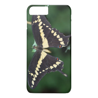 Giant Swallowtail Butterfly iPhone 8 Plus/7 Plus Case