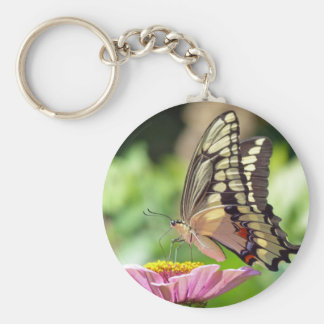 Giant Swallowtail Butterfly Basic Round Button Keychain