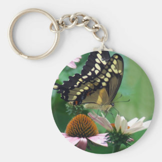 Giant Swallowtail Butterfly on Flowers Basic Round Button Keychain