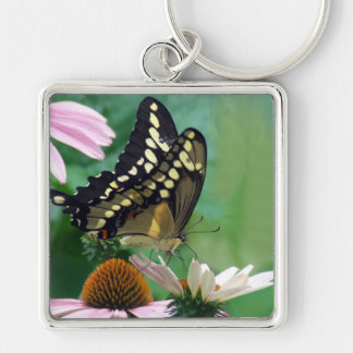 Giant Swallowtail Butterfly on Flowers Silver-Colored Square Keychain