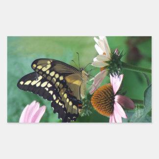 Giant Swallowtail Butterfly on Flowers Rectangular Sticker