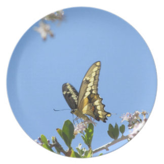 Giant Swallowtail Butterfly Party Plates