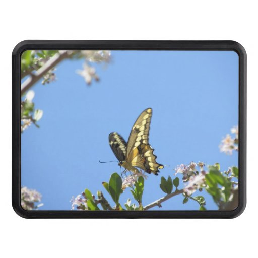 Giant Swallowtail Butterfly Trailer Hitch Cover