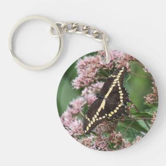 Giant Swallowtail Keychain