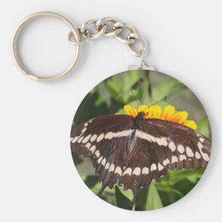 Giant Swallowtail Keychains