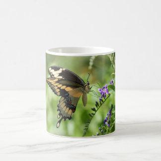 Giant Swallowtail Mug