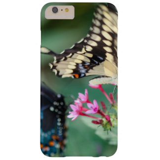 Giant Swallowtail Papilio Cresphontes Barely There iPhone 6 Plus Case