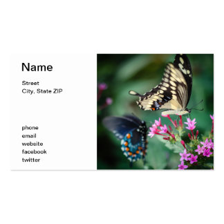 Giant Swallowtail Papilio Cresphontes Business Card
