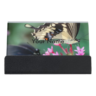 Giant Swallowtail Papilio Cresphontes Desk Business Card Holder