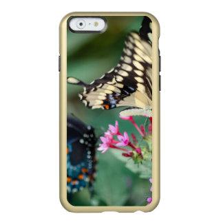 Giant Swallowtail Papilio Cresphontes Incipio Feather Shine iPhone 6 Case