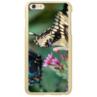 Giant Swallowtail Papilio Cresphontes Incipio Feather Shine iPhone 6 Plus Case