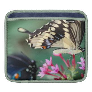 Giant Swallowtail Papilio Cresphontes iPad Sleeves