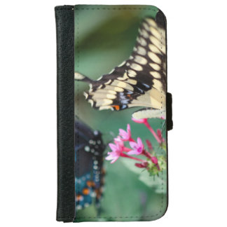 Giant Swallowtail Papilio Cresphontes iPhone 6/6s Wallet Case