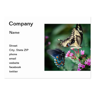 Giant Swallowtail Papilio Cresphontes Large Business Card