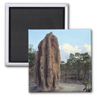 Giant termite mound, Northern Territory, Australia 2 Inch Square Magnet