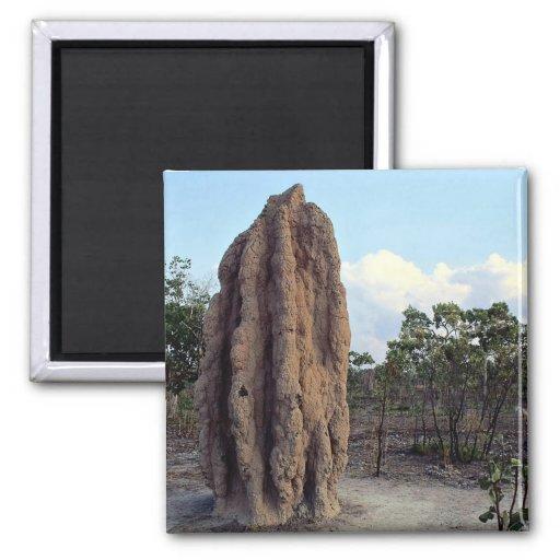 Giant termite mound, Northern Territory, Australia Refrigerator Magnet