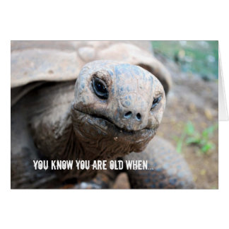 Giant Tortoise Memory Lapse Greeting Card