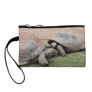 giant tortoises coin purse