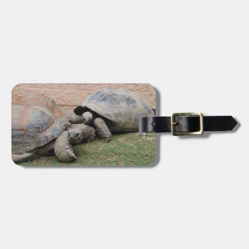 giant tortoises travel bag tag