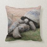 giant tortoises pillows
