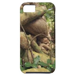 Giant Tree Roots Trip to Zanzibar Island Reefs Fun iPhone SE/5/5s Case